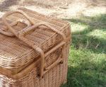 picnic at winery