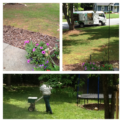 TruGreen Curb Appeal Lawn Treatment