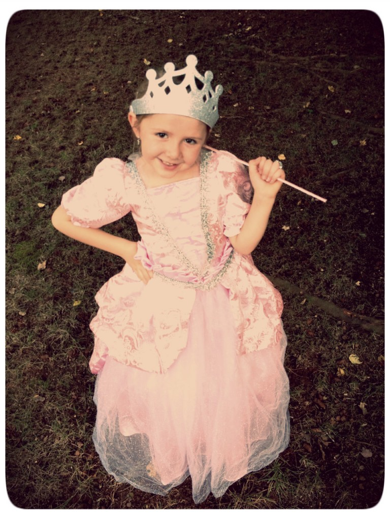 Sweet Fairy Princess Halloween Costume from Chasing Fireflies