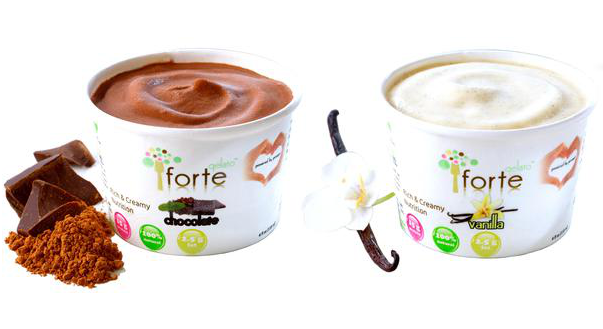 Forte Gelato - Chocolate and Vanilla