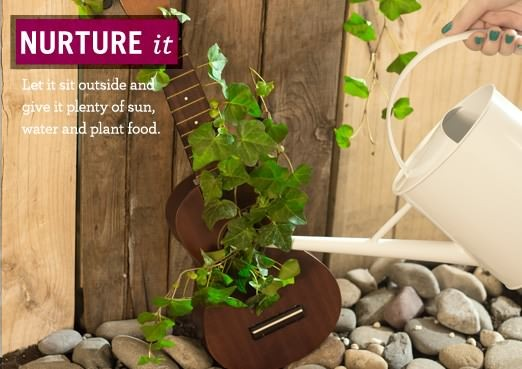 Make a Ukulele Garden with help from Miracle - Gro The Gro Project! #MiracleGroProject