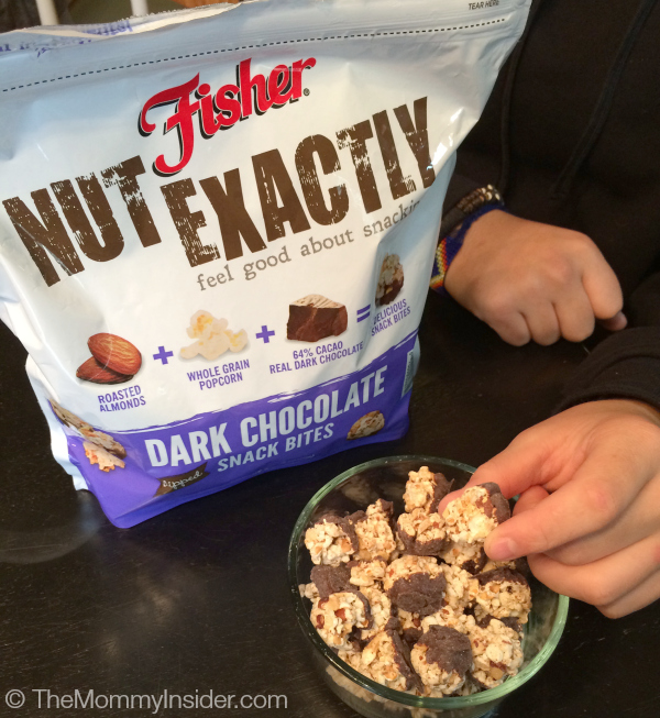 Fisher Nut Exactly Dark Chocolate Dipped Snack Bites