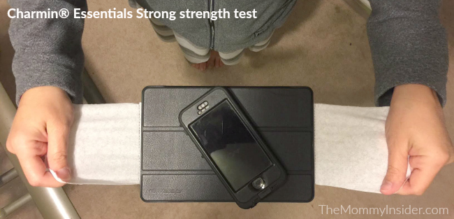 Charmin Essentials Strong holds iPad